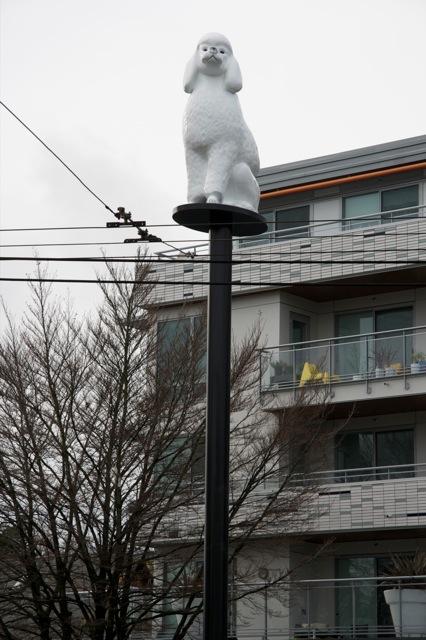 culture-public-art-civic-main-street-uts-gisele-amantea-memento-image-poodle-1